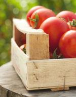 Pomodori da Conserva